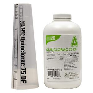 Quinclorac-75-DF-Turf-Herbicide-1-Lb-Crabgrass-Clover-Foxtail-Dandelion-Killer