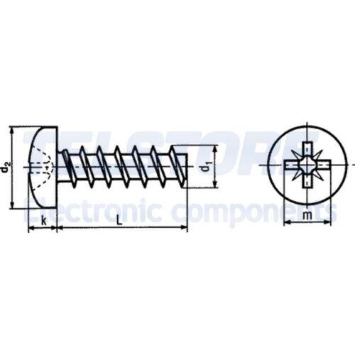100pcs  Vite per plastica 2,5x14 Testa cilindrica Pozidriv acciaio BOSSARD