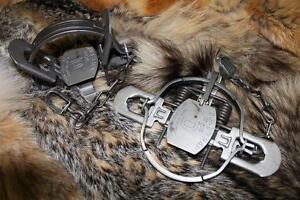 12 DUKE #1 3/4 COILSPRING coyote, badger, bobcat, fox, raccoon trap