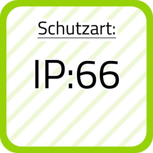 Spelsberg Klemmenkasten RK 4//25L-leer IP66 grau Wand 62591601 Kunststoff