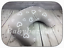 DELUX-BREAST-FEEDING-MULTIPURPOSE-SUPPORT-PILLOW-MATERNITY-NURSING-WITH-COVER thumbnail 122