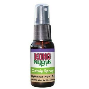 KONG-Naturals-Catnip-Spray-1oz-Free-Shipping-In-USA