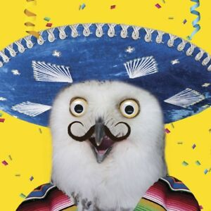 Image Is Loading Owl Birthday Card Funny Mexican Amp Sombrero