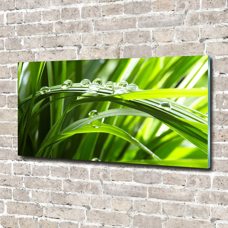Wandbild aus Plexiglas® Druck auf Acryl 140x70 Blaumen Pflanzen Tropfen auf Gras