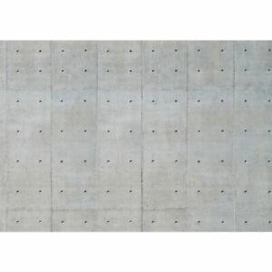 2741 Fototapete Beton Textur liwwing no