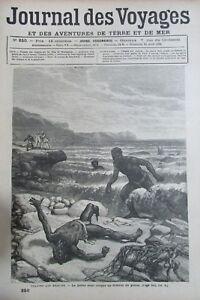Zeitung-der-Voyages-Nr-250-von-1882-Sidecut-aus-Madagaskar-Jagd-den-Hai