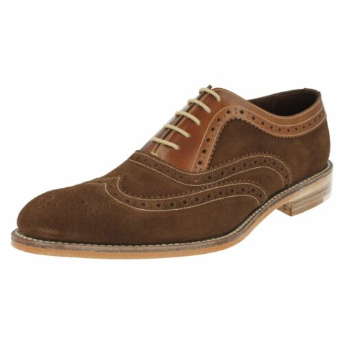 'floyd' Brogues brown Dark Formal Mens Brown Loake 0YnptnZE