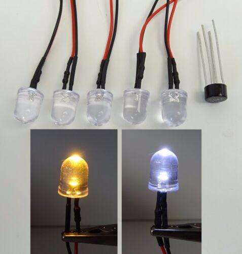 5 Pièces DEL 10 mm par exemple comme hausbeleuchtung 12 V Branché DC ou AC Neuf c2655