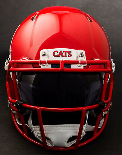 *CUSTOM* ARIZONA WILDCATS NCAA Riddell Speed AUTHENTIC Football Helmet
