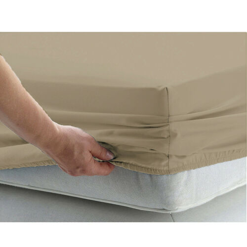 Cushy Bedding 1 PC Fitted Sheet 1000TC Egyptian Cotton Taupe Solid Cal King Size