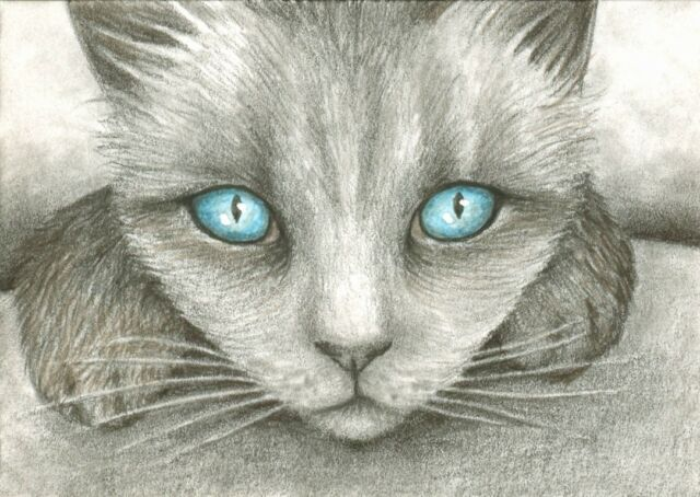 ACEO LE art print Cat 332 from original painting by L.Dumas