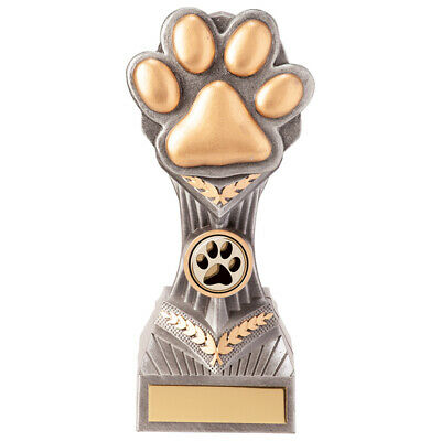 150mm Football Trophy inc free postage engraving RRP £9.99