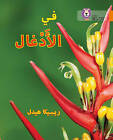 In the Jungle: Level 6 (Collins Big Cat Arabic Reading Programme) by Becca Heddle (Paperback, 2016)