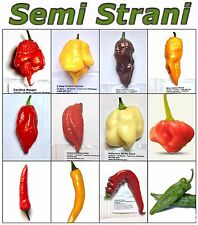 120 Seeds HOT CHILI PEPPERS Coll 3: CAROLINA REAPER, HABALOKIA, GHOST, PRIMO etc