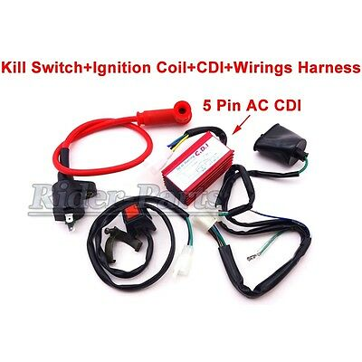Kill Switch Racing Ignition Coil CDI Wirings Loom Harness Chinese Pit Dirt Bike