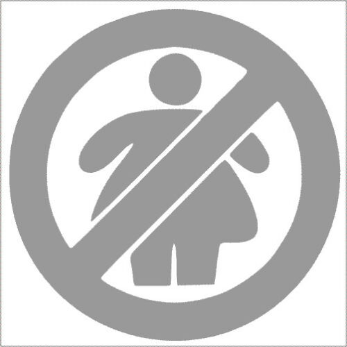 Pack No Fat Chicks Vinyl Decal Sticker 2 TWO