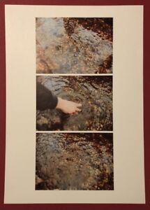 Helmut svizzeri, atti i 1, fotografia, offset, 1975, firmato a mano
