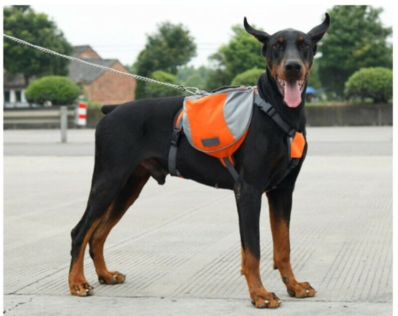 New! Outward Hound Day Pack Dog Backpack Hiking Gear For Dogs-saddleba