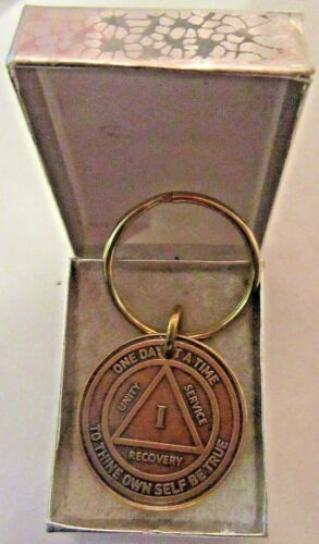 Alcoholics Anonymous 1 Year AA Bronze Medallion Key Chain Token coin keychain