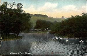 Glasgow-Schottland-Scotland-1910-Alexandra-Park-Parkanlage-Gardens-Pond-Teich