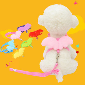 ferret-chinchilla-guinea-pig-mouse-harness-leash-angel-wings-small-pet-animal-SL