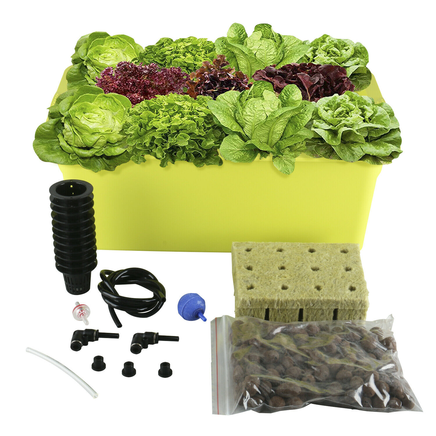 New! 11 Holes Plant Site Hydroponic System Grow Kit , Best Indoor Herb Garden 1