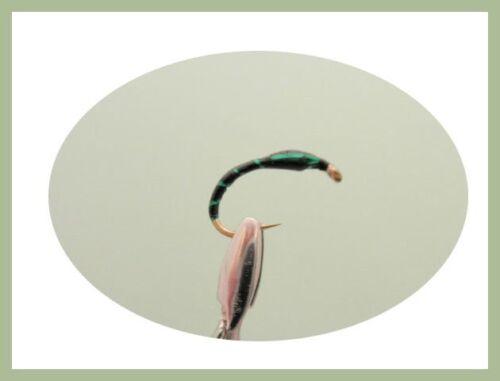 Mixte Couleur /& Taille Crisp Paquet Buzzers Truites Mouches 18 Pack pêche à la mouche