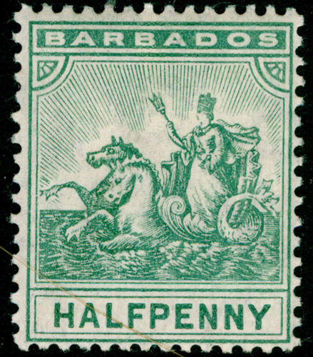 BARBADOS SG136, ½d green, M MINT. Cat £27.