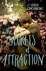 The Secrets of Attraction by Robin Constantine (Hardback, 2015)