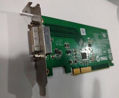 Low profile lot of 10x Dell DVI-D PCI Video Card FH868  D33724 E-G900-04-2600 B