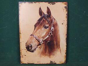 Blechschild-Pferd-Pferde-Kopf-Antik-Stil-Nostalgie-Schild-mit-Aufhaenge-Osen