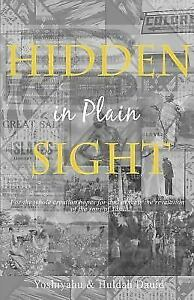 Hidden-in-Plain-Sight-The-Revelation-of-the-Son-039-s-of-Yah-in-America-Paperback