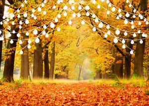 10x8ft Autumn Forest Trees Fall Leaves Lights Photo Background Vinyl Backdrop Lb Ebay