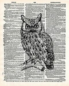 WOODLAND WINTER OWL LARGE A3 SIZE QUALITY CANVAS PRINT