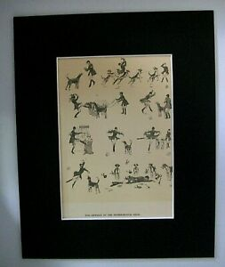 Dog-Print-Cecil-Aldin-Showing-Hounds-Peterborough-Show-1928-Bookplate-8x10-w-Mat