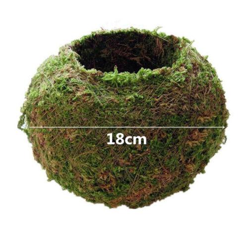 7cm-18cm mousse boule Planteur Pot Costume Orchid ou petite plante de jardin de Noël Décoration