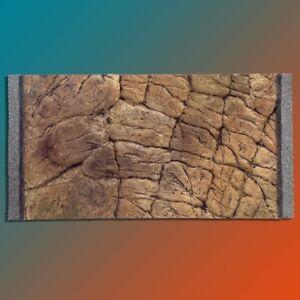 Paroi Arriere 3d 60x30 Cm Terrarium Fif