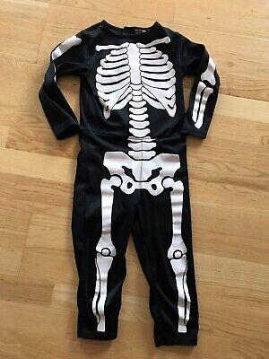 Find Halloween Skelet på DBA køb og salg af nyt og brugt