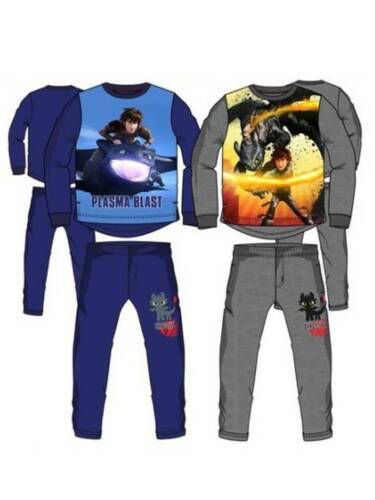Dragons Drachen Zähmen Leicht gemacht Jogging Anzug Blau oder Grau NEU