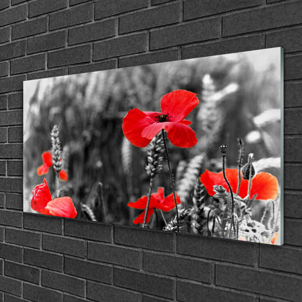Glass Picture 100x50 WALL ART Picture Print on Glass Poppy FFaibleers Plants