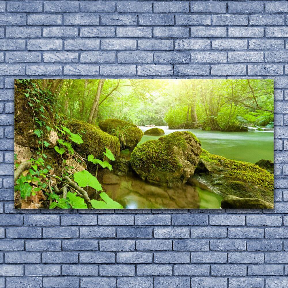 Wall art Print on Plexiglas® Acrylic 140x70 Lake Stones Nature