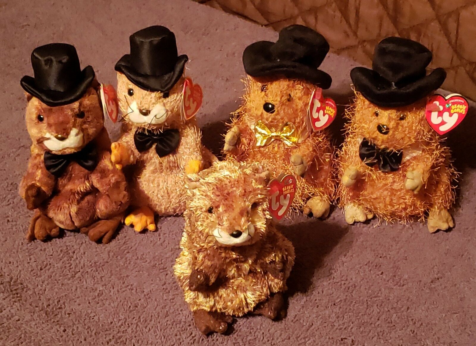 Ty Beanie Babies Lot Of 5 PUNXSUTAWNEY PHIL'S...2 Ty Store Exclusives..MWMT-NrMT