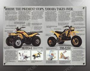 Yamaha Tri Moto  Reproduction