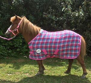 Mini Shetland Or Pony Pink Check Waffle