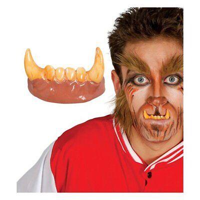 Werewolf Teeth Horror Halloween Adult Wolf Man Fancy Dress Accessory Wolf  Fangs   eBay
