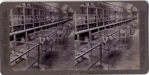 Pompei-Museo-Italia-Foto-Stereo-Vintage-Citrato-1897