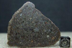 NWA-11056-LL3-Primitive-Chondrite-Meteorite-10-5-gram-complete-slice