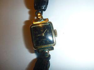 watch-Montre-wittnauer-10-rubis-walz-gold-double-20-mikron-boden-edelstahl-gilt
