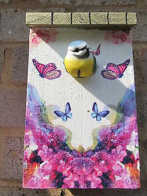 Decorato Farfalla Scatola Di Nidificazione in Legno Bird//House PICCOLI VOLATILI CINCIARELLA-fringuelli