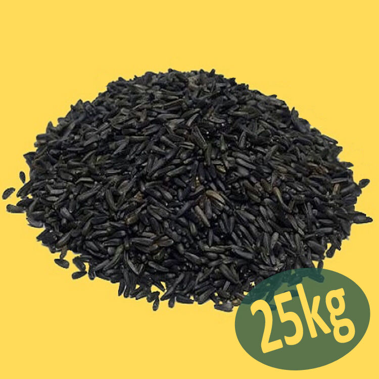 25kg Niger Seed Premium Quality for Wild Bird - Nigerseed Nyjer Finch Food